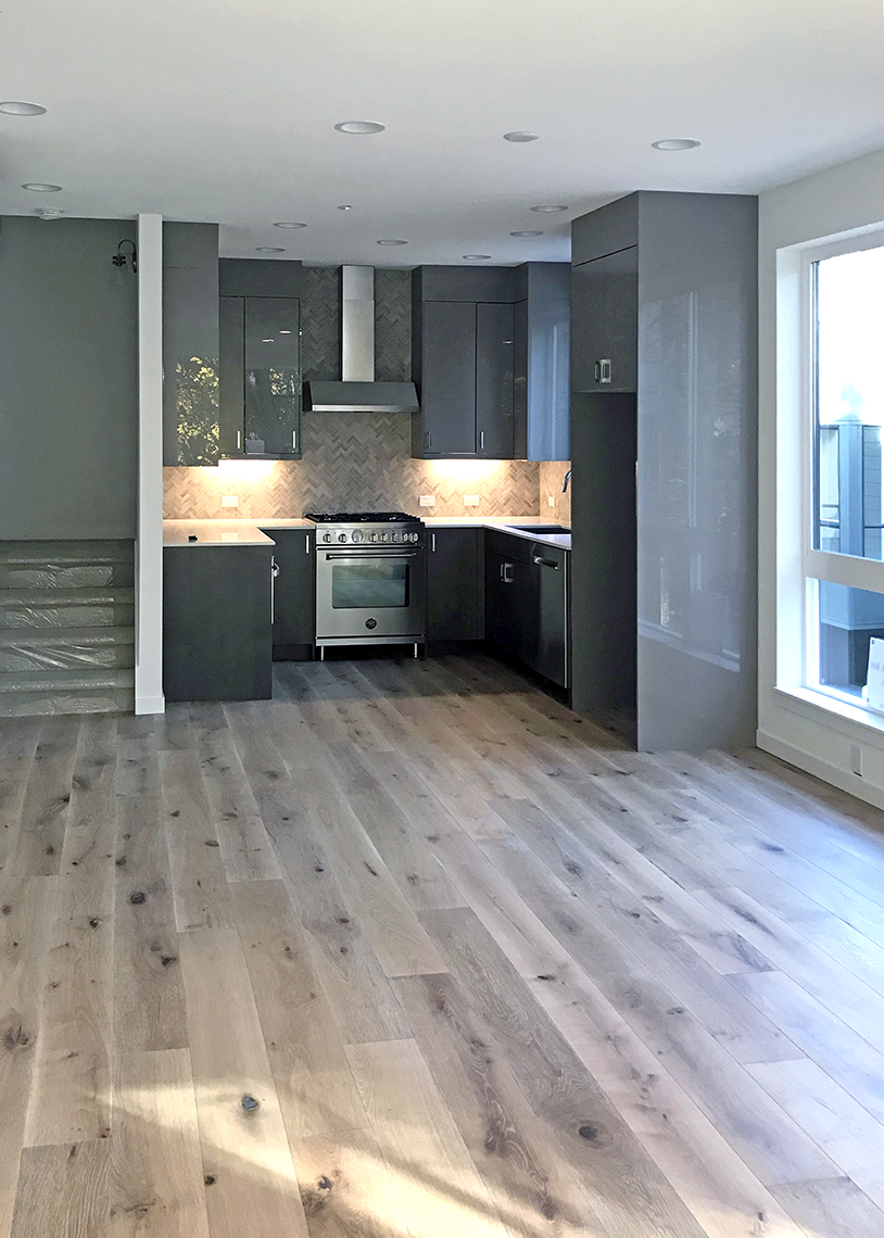 Denizen Development Group Madrona 12 Built Green 4-Star live/work townhomes kitchen and living room